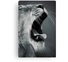 Yawn... Canvas Print