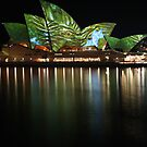 Opera House & Colours (8) by Scott Westlake