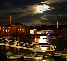 Moonlight Over Tamar by dspics