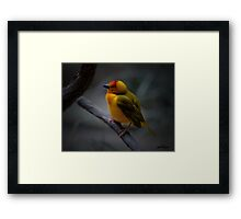 THE YELLOW ONE Framed Print