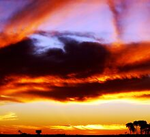 Red Centre Sunset by Tamara Travers