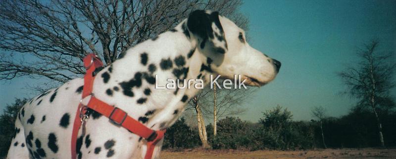 Kingsley 2 by Laura Kelk