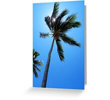 Dominican Palms Greeting Card