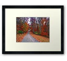 *MY FAVORITE COUNTRY ROAD* Framed Print