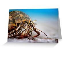 The Hermit Crab 4 Greeting Card
