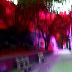 Psychedelia in Central Park by WhoTLEoyd