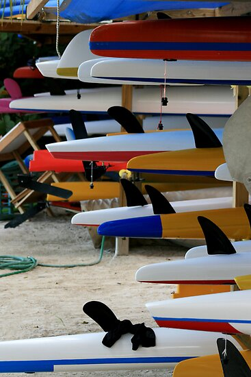 kayaks by Kent Tisher