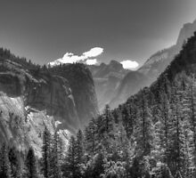 Yosemite Valley by Shaina Lunde