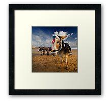 Patch - Beach Donkey Framed Print