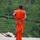 buddhist monk by steveault
