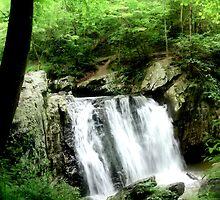 Kilgore Falls_Spring by Hope Ledebur