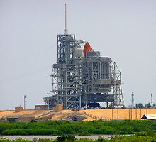 Endeavor on the Launchpad by Megan Evorik