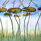 Lily Pads by Carolyne  Gill