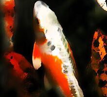 Essence of Koi by G. Patrick Colvin