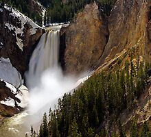Lower Falls - Yellowstone River by Stephen Beattie