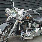 Harley Davidson motorbike by Paul Morley