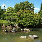 Zen lake by freddy0707