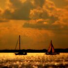 WE SAILED IN  A   GOLDEN    ......  by Rick  Todaro