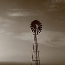 Windmill at dawn , Smithton , Tasmania , Australia by phillip wise