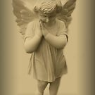 Angels of Hope by Marie Sharp