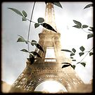 PARIS 1 by Bianca Stanton