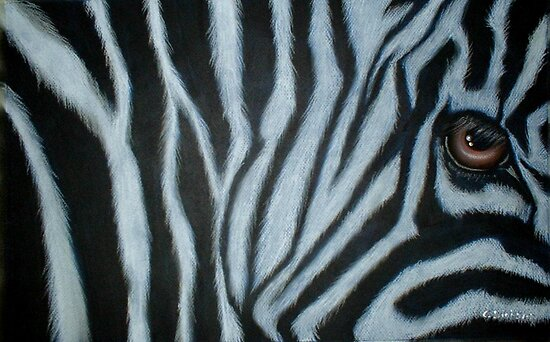 Zebra Eye by Cherie Roe Dirksen