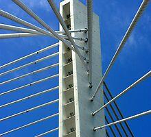 Millennium Bridge, Podgorica by Stephen Maxwell