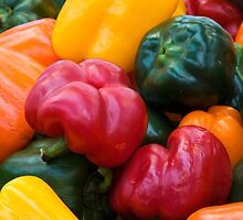 Capsicum Select by Wulfrunnut