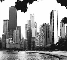 APPEARANCE OF CHICAGO IN B/W by Scott  d'Almeida
