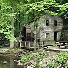 Rice Grist Mill by  Bob Hall