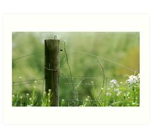 The Fence Post Art Print
