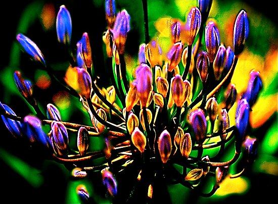 media sorcerer-chakra flower by media-sorcerer