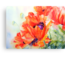 Song of Summer Canvas Print