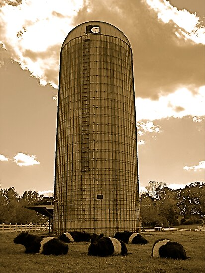 Antique Silo Farm by Jonathan  Green