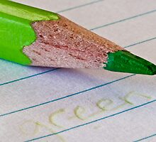 The Green Pencil by Irene Scales