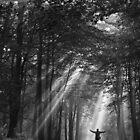 Beam Me Up by hfaulkner