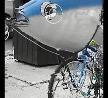 Fish on a Bicycle by Lyana Votey