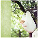 Newborn Tree Hammock by Kristen  Caldwell