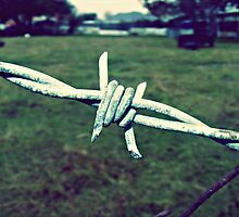barbed wire by Journeyevers