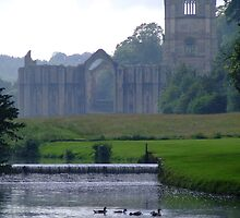 Fountains Abbey by Richard Yeomans