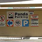 But where do I park my giraffe? by Ian Ker