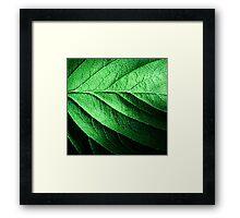 Veins Framed Print