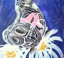 painted lady by dianalynn