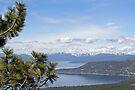 """Lake Tahoe North Shore"" by Lynn Bawden"