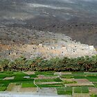 Pise Village, Oman  by Julie Waller