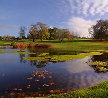 Golf pond at dromoland golf club, county clare, ireland by upthebanner