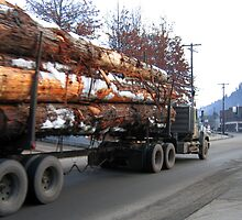 Americana • Timber 'jinker' truck, Orofino Idaho by PETER CULLEY