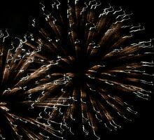 Independence Day 21 by Lita Medinger