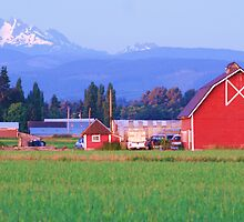 Snohomish farmland by Michael Parramore