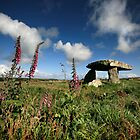 Cornwall : Lanyon Quiot by Angie Latham